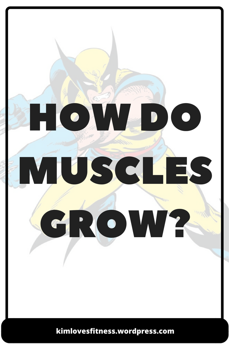 how-do-muscles-grow-cover